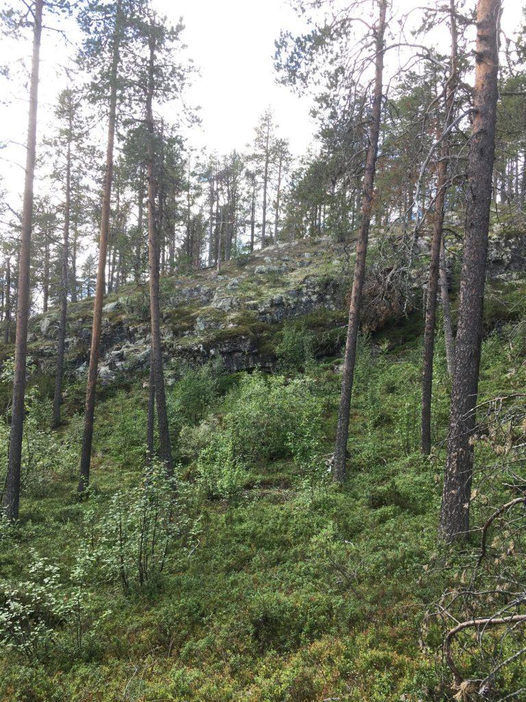 Kuntopolku trail in Hetta