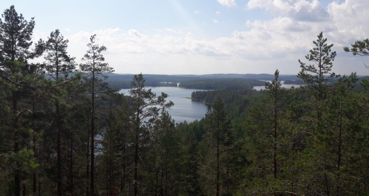 View from Neitvuori over the Lakeland