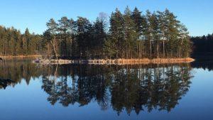 An island in Iso-Valkee lake