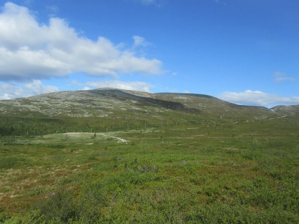 Pallas Lapland