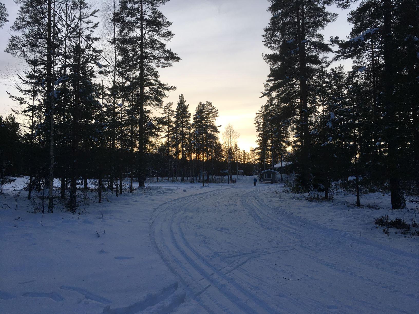 Cross country skiing in Lohja