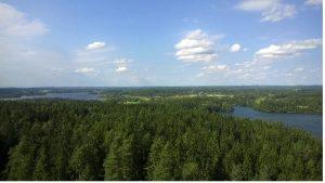 Aulanko scenery