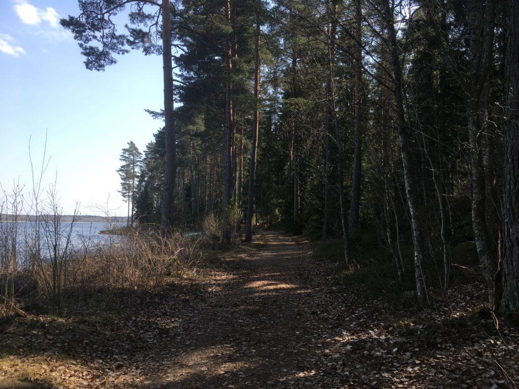 Saari Folk Park trails along lake Kuivajärvi