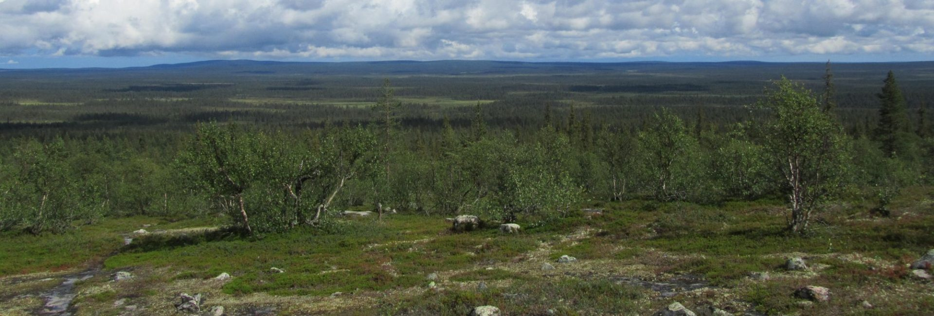 Pulju wilderness area