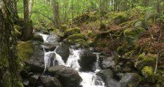 Rissla waterfall