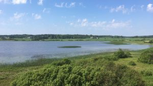 Aneriojärvi view