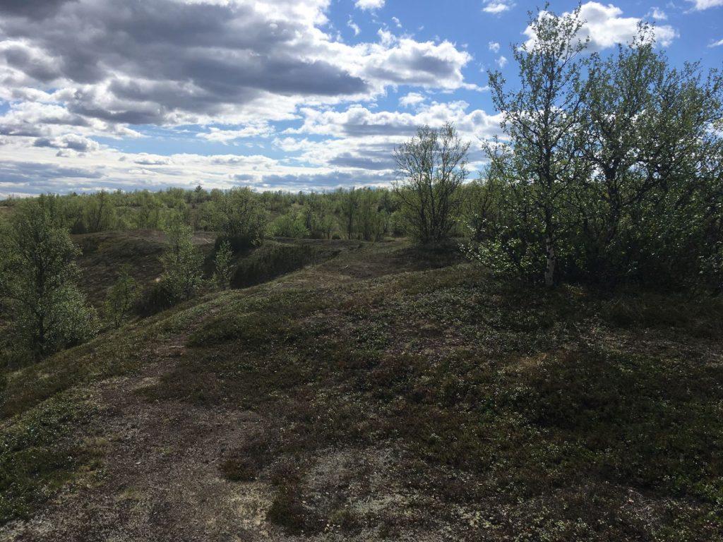 Hietatievat in Enontekiö