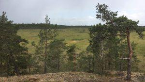 Marttila wilderness trails