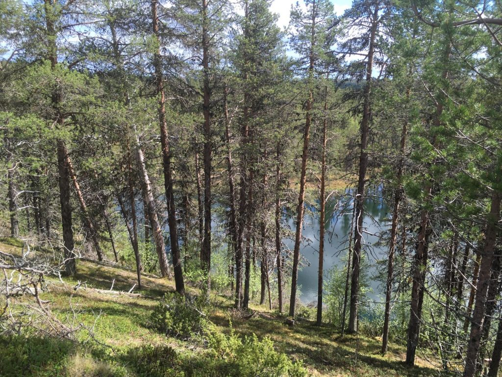 Sininenjärvi