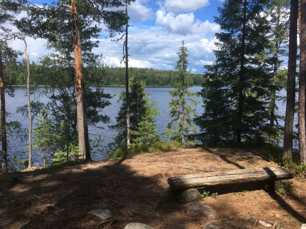 Liesjärvi National Park Ahonnokka