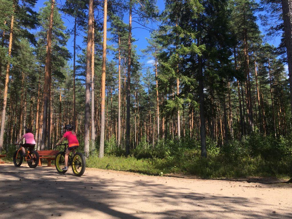 Fatbiking at Ruostejärvi