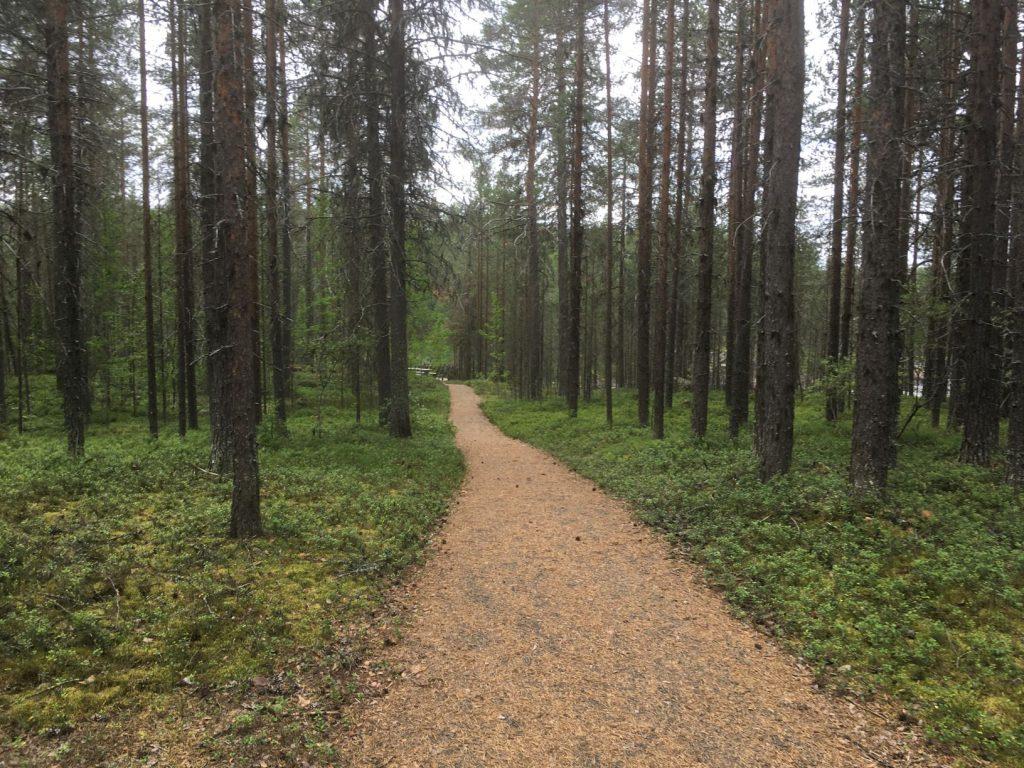 Molkoköngäs path