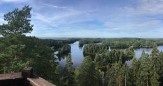View from Kaukolanharju observation tower in Saari Folk Park
