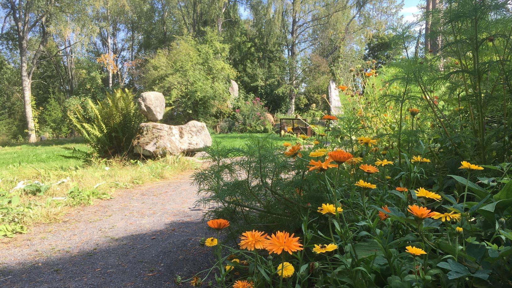 Hörtsänä Arboretum garden