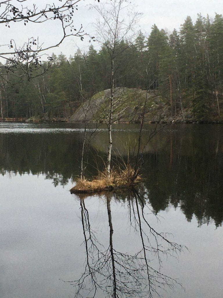 Little island on Kaitalampi lake