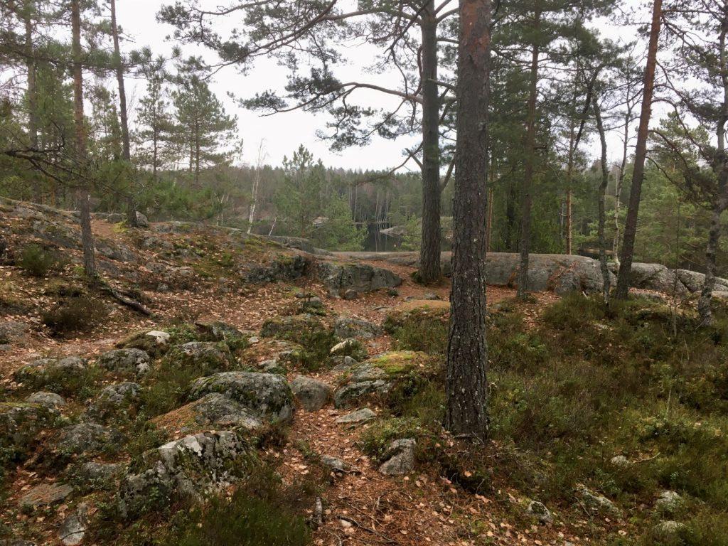 Rocky terrain at Kaitalampi