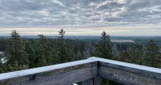 Hevonlinna observation tower view