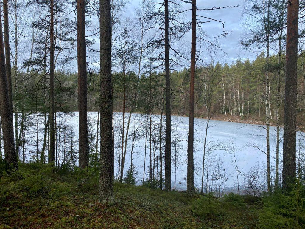 Hevonlinnanjärvi lake
