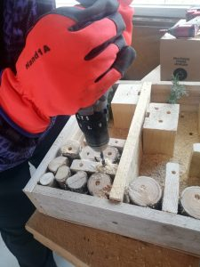 Building insect hotel