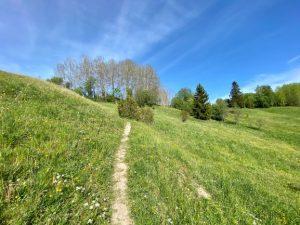 Häntälä ravine nature trail