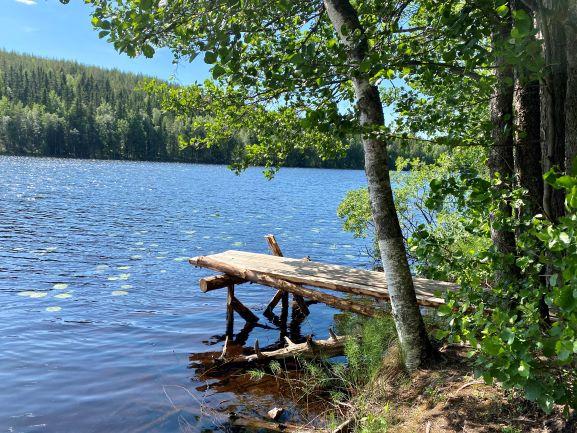 Kalliojärvi Viitasaari