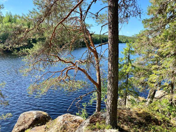 Koljatti nature trail