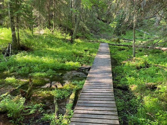 Ryövärinkuoppa natural spring