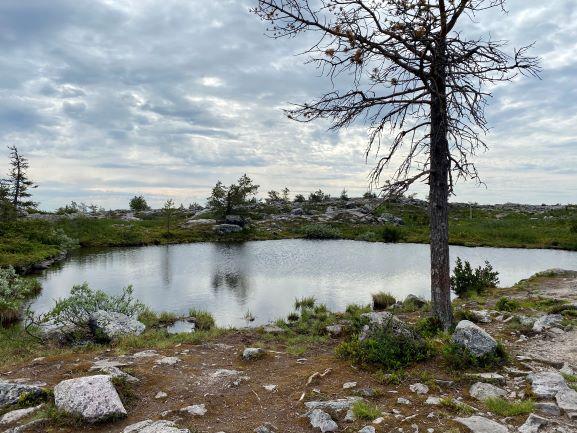 Särkitunturi lake