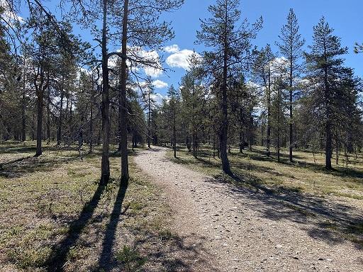 Saivonkierros nature trail