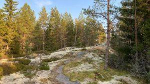 Bergvik nature trail