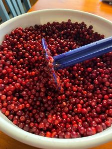 Lingonberry bucket