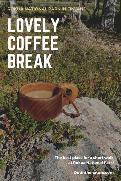 Lovely coffee break at Rokua Pinterest