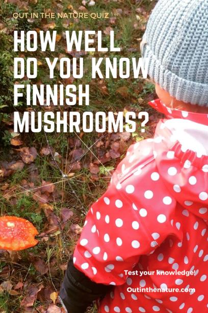 Nature quiz mushrooms Pinterest