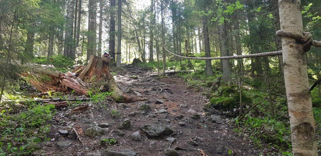 Piilolammi difficult terrain