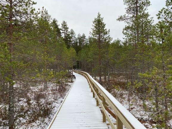 Harjujärvi accessible trail