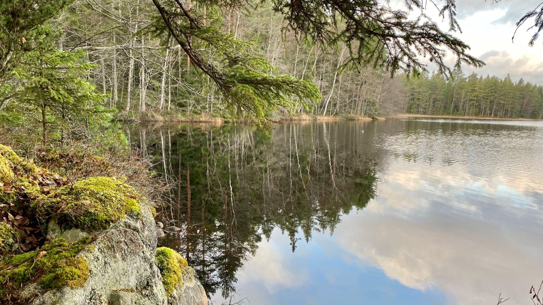 Kivisammaljärvi on Hämeen Ilvesreitti