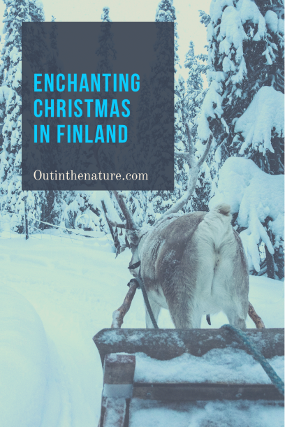 Enchanting Christmas in Finland
