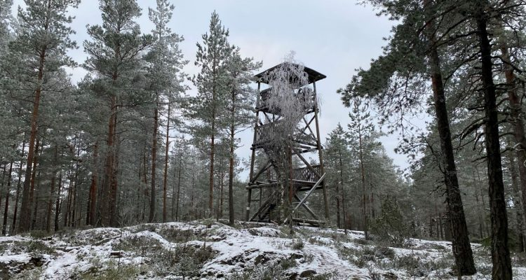 Korkeusvuori observation tower