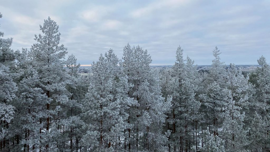 View from Korkeusvuori observation tower