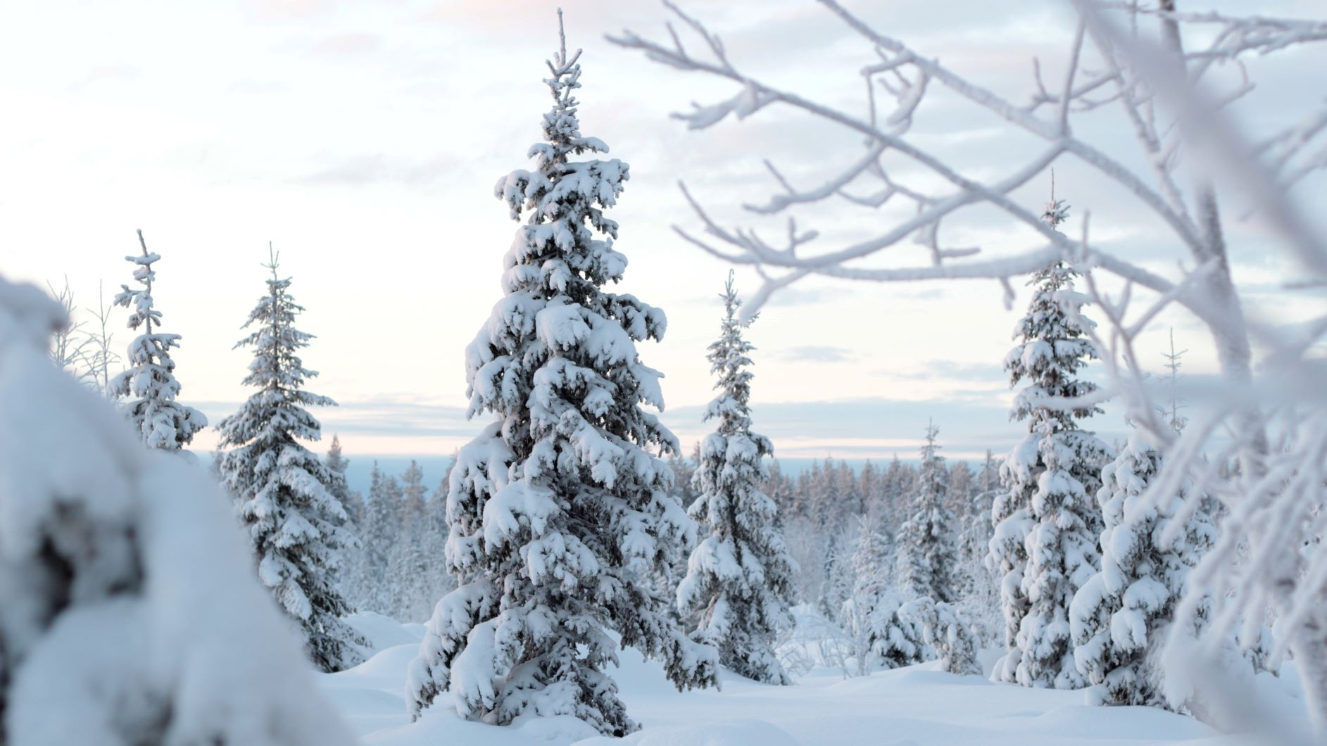 How to ground yourself in winter in Finland