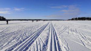 Cross-country skiing in Turku