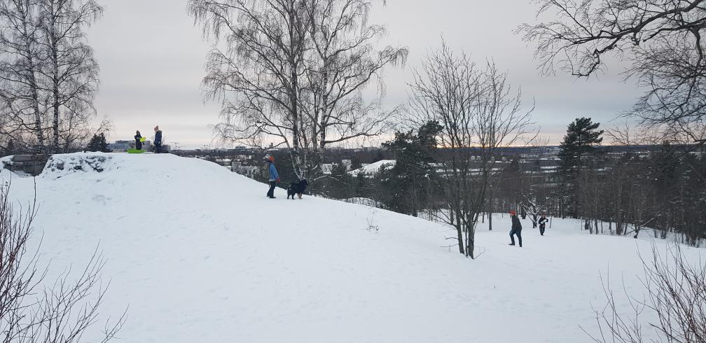 Taivaskallio views over Helsinki at Käpylä