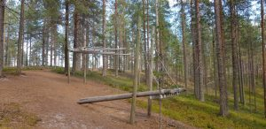 Musical Forest Soiva Metsä Suomussalmi