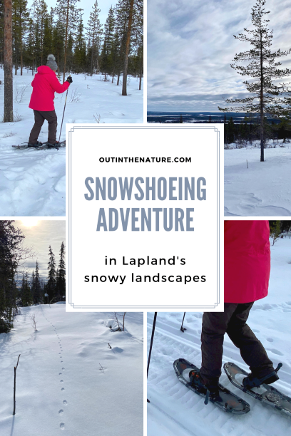 Pin it for later - Snowshoeing in Lapland