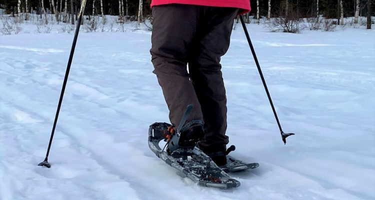 Snowshoeing in Lapland