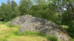 Cup-marked stones of Letku in Tammela
