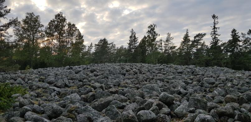 Kasnäs muinaisranta pirunpelto. Kasnäs devil's field ancient shoreline.