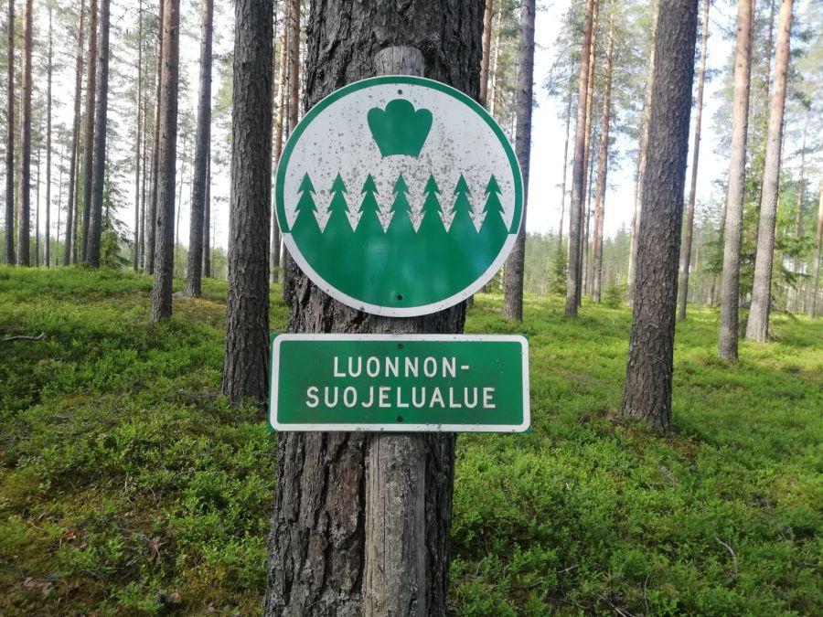 Pyhäkangas Saarijärvi protected area