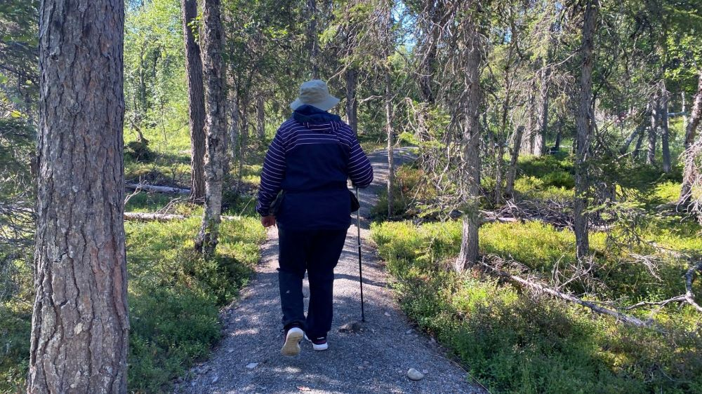 Beginning of Pyhäjoki nature trail