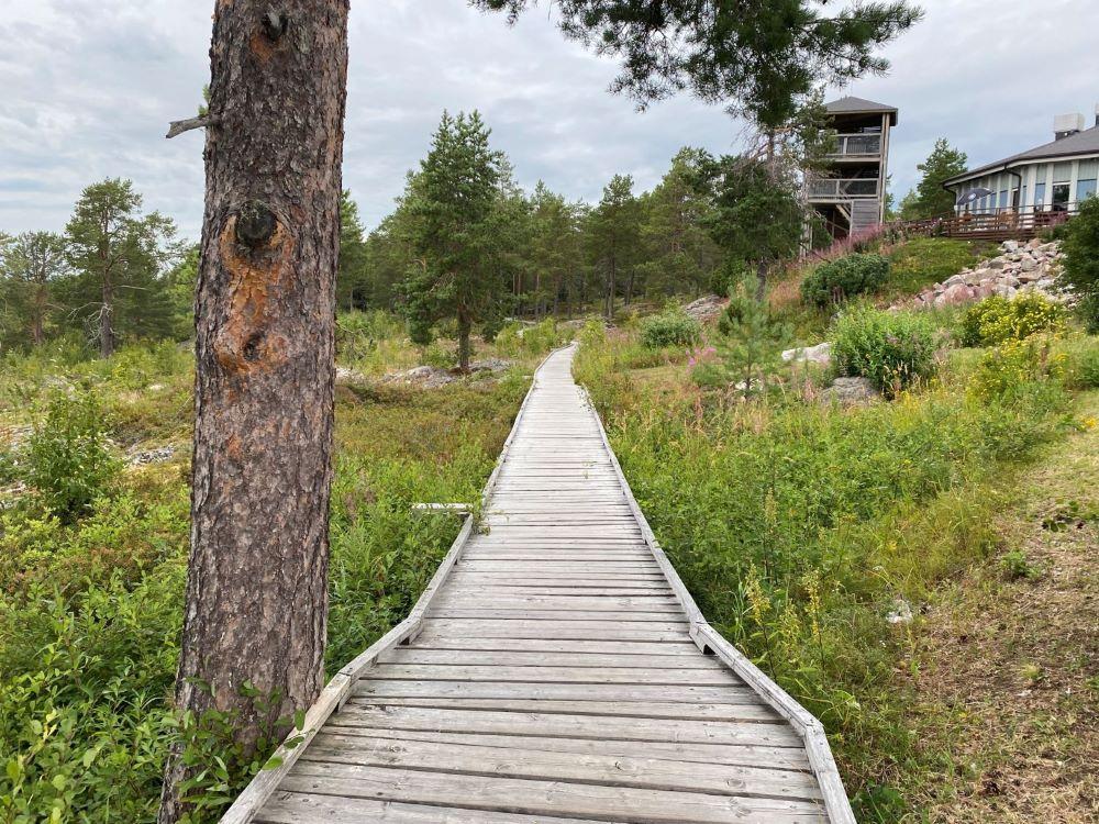 Sailor's trail birdwatching tower
